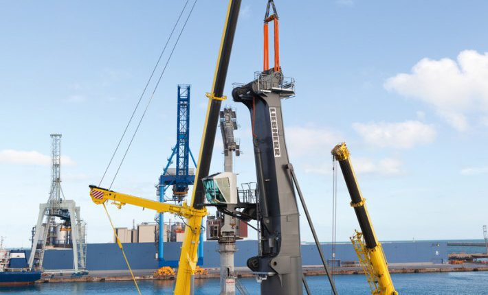 Liebherr mobile cranes at the assembly of a mobile harbour crane at the industrial docks in Sète, France